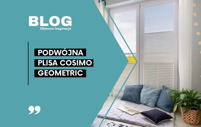 blog plisy